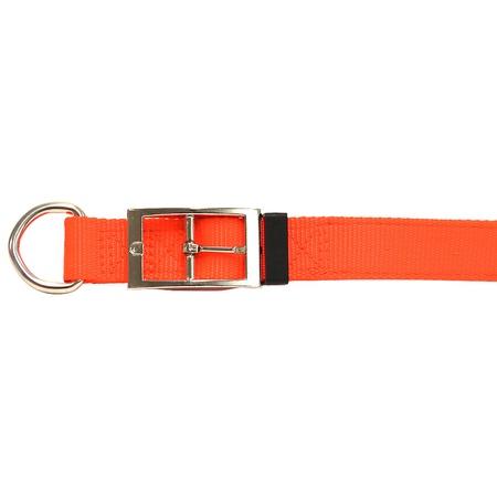 "Nylon Dog Collar, D-End, 1"" Wide, Orange"