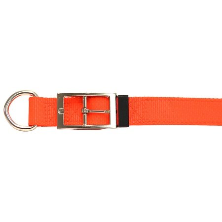 "Nylon Dog Collar, D-End, 3/4"" Wide, Orange"