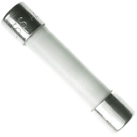 Ceramic Tube Fuse 15 Amp 250 Volt Fast Blow for Microwaves, etc.