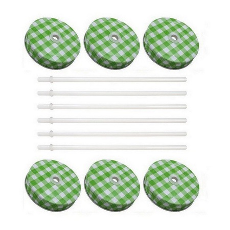 Sunshine Mason Co. Green Gingham Mason Jar Lids with White Straws 6 Pieces