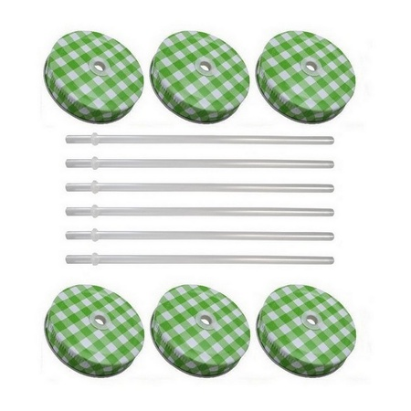 Sunshine Mason Co. Green Gingham Mason Jar Lids with Clear Straws, 6 Pieces