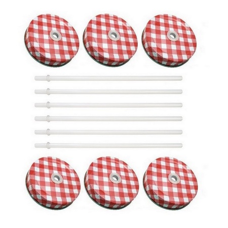 Sunshine Mason Co. Red Gingham Mason Jar Lids with White Straws, 6 Pieces