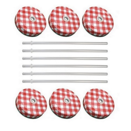 Sunshine Mason Co. Red Gingham Mason Jar Lids with Clear Straws, 6 Pieces