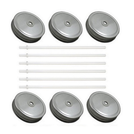 Sunshine Mason Co. Silver Mason Jar Lids with White Straws, 6 Pieces