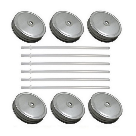 Sunshine Mason Co. Silver Mason Jar Lids with Clear Straws, 6 Pieces