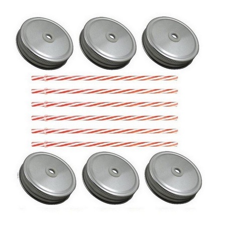 Sunshine Mason Co. Silver Mason Jar Lids with Red Stripe Straws, 6 Pieces
