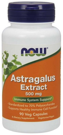Now Foods Astragalus Extract 500 Mg - 90 Cap