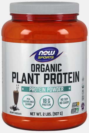 Now Foods Plant Protein Organic Natural Chocolate - 2 Lb