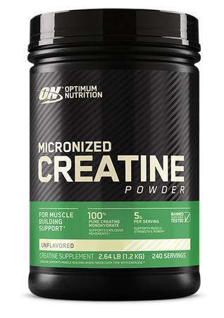 Optimum Nutrition Creatine Micronized - 1200 Grams (240 Servings)