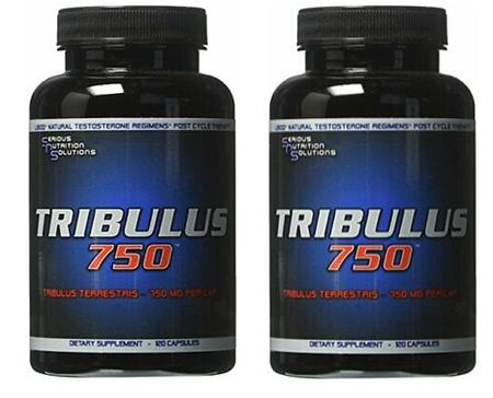 SNS Serious Nutrition Solutions Tribulus 750 - 240 Caps (2 x 120 cap btls)