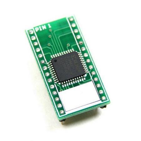 06xx Bus Interface Custom Chip