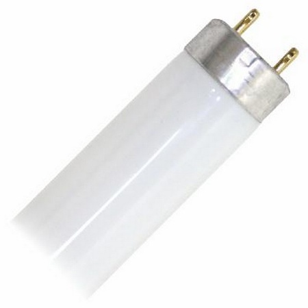 Flourescent Light Bulb 18""